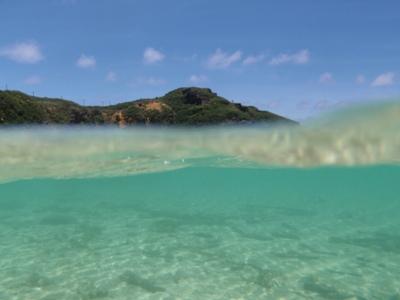 6月 18日  続・海です。_b0158746_17181813.jpg