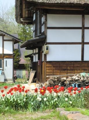 花と家_f0227395_11481637.jpg