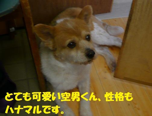 f0121712_0505933.jpg