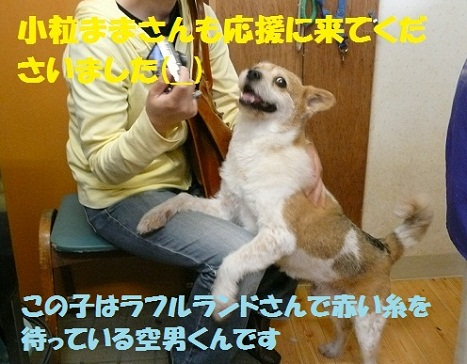 f0121712_0553027.jpg
