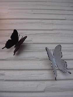Les papillons en fer_d0232015_2313068.jpg