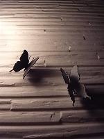 Les papillons en fer_d0232015_23151449.jpg