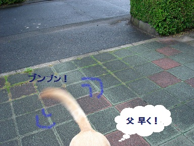 b0226221_10153428.jpg
