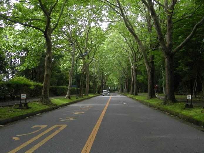 筑波大学へ_d0166534_2355441.jpg