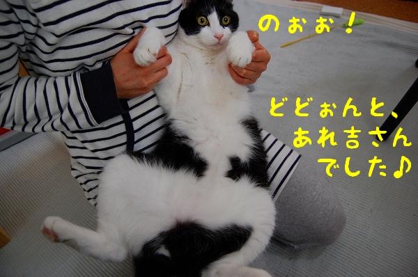 c0181639_1495530.jpg