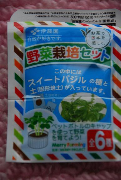 野菜栽培セット♪_d0135762_22103339.jpg