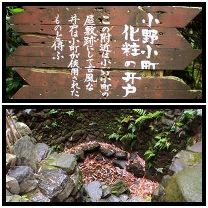 京都観光_a0199979_20163771.jpg