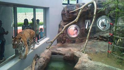 福山市立動物園とホロコースト_e0173183_1351584.jpg