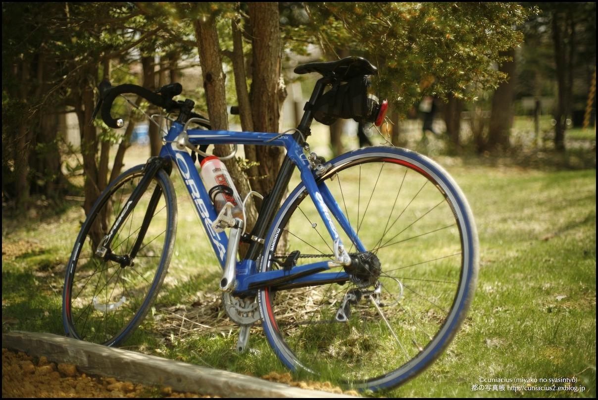 青い自転車_f0042194_1263239.jpg