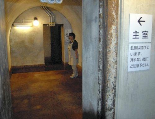 全米で「地下シェルター」大流行:「日本列島地下改造論」で復興できるゾ!_e0171614_1133311.jpg