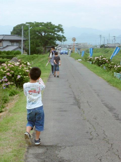 造田アジサイ祭り_e0136620_19331667.jpg