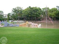 ∵梅雨の中休みの公園で_d0040733_16142690.jpg