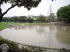 ∵梅雨の中休みの公園で_d0040733_16153077.jpg