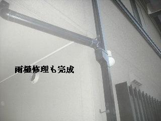 f0031037_1843660.jpg