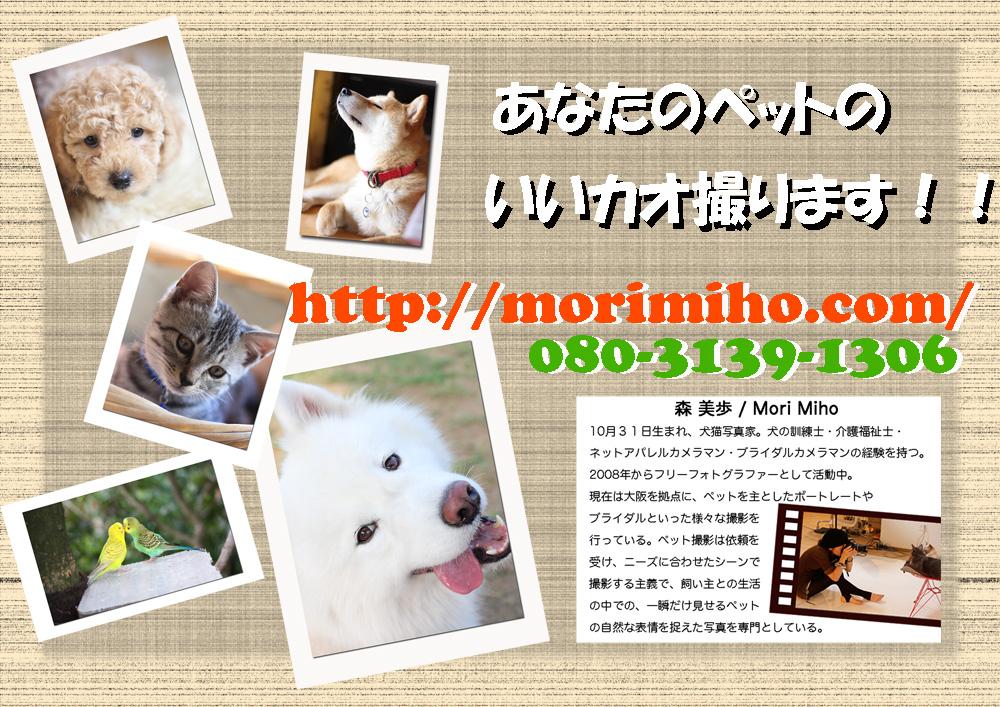 b0123371_19473256.jpg