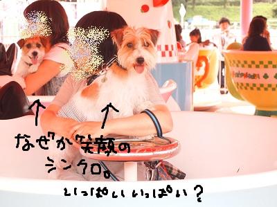 b0092580_2256594.jpg