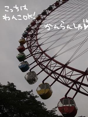b0092580_2395598.jpg