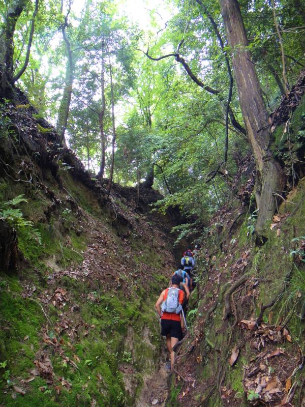 2011/06/18 Long trail session in 京都_b0220886_16363529.jpg