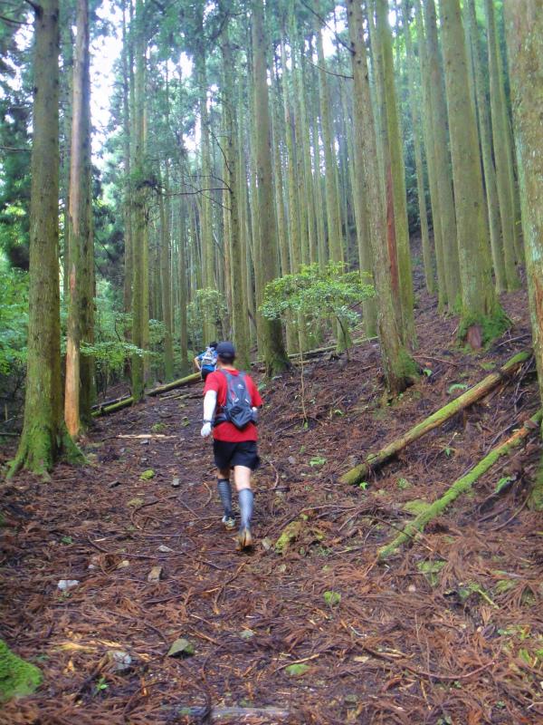 2011/06/18 Long trail session in 京都_b0220886_17182163.jpg