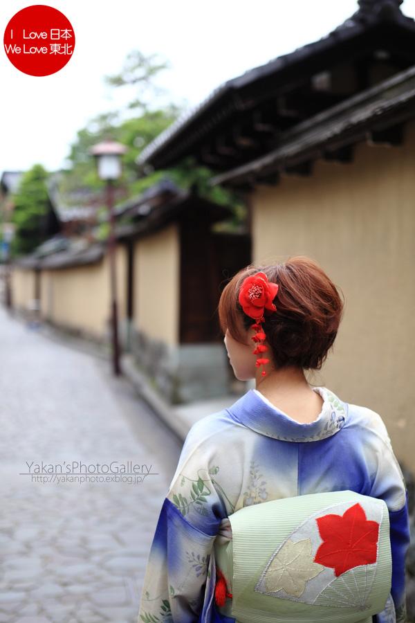 「そうだ 金沢、行こう。」と誘われ着物美女写真撮影 02 長町の武家屋敷跡石畳の小路編~ツバメ追加~_b0157849_22444690.jpg