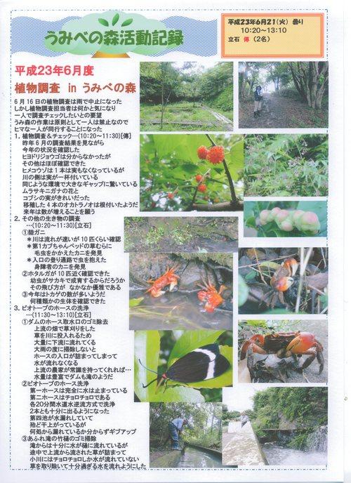 H23年6月度植物調査_c0108460_22385188.jpg