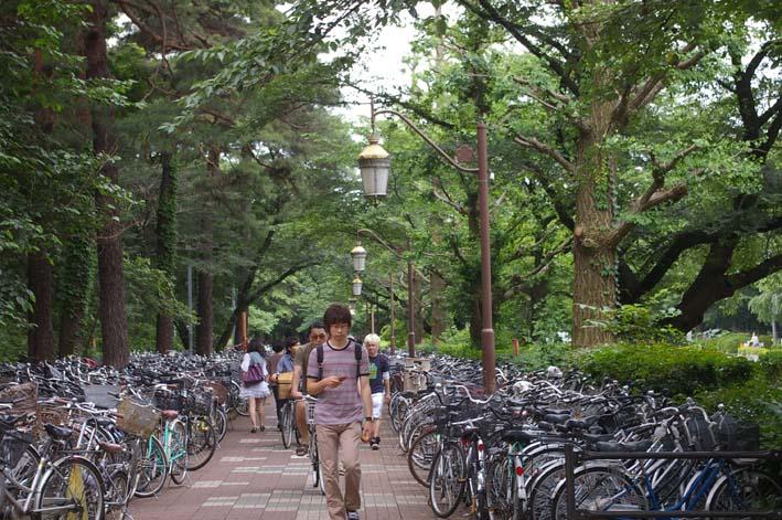 石田泰尚リサイタルのポスター、チラシを一橋大学へ_c0014967_22132119.jpg