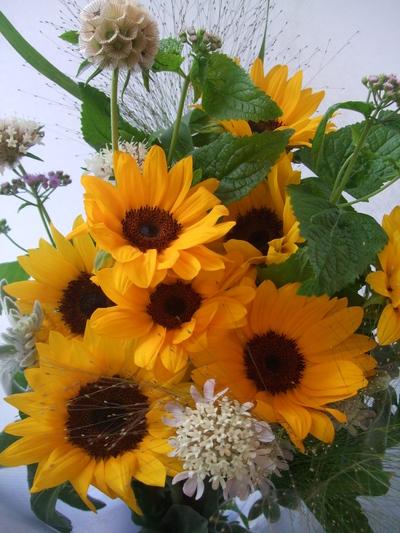 オークリーフ(父の日に贈る花束)_f0049672_16293167.jpg