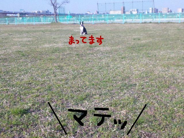 d0187891_340666.jpg
