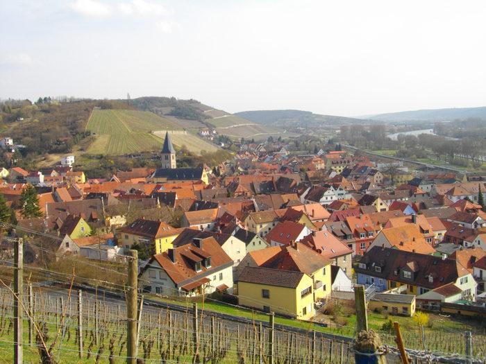 当blogはドイツ・フランケンワイン専門店「ワインショップ・マリーエンベ... ドイツ・フランケ