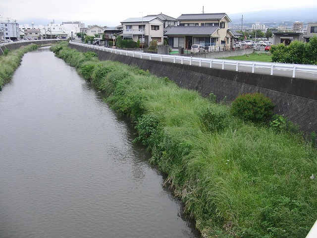 きれいになった?小潤井川_f0141310_7202224.jpg