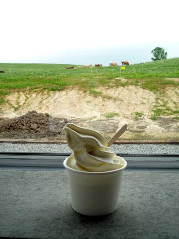 美味ジャージー牛のソフトクリーム♪_f0096216_203790.jpg