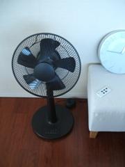 扇風機到着_d0069063_149397.jpg