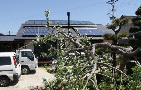 再生可能エネルギー促進法_c0084368_10562163.jpg
