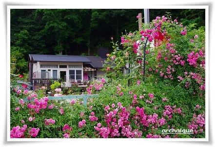 森の工房 夏準備!!_c0207890_135689.jpg
