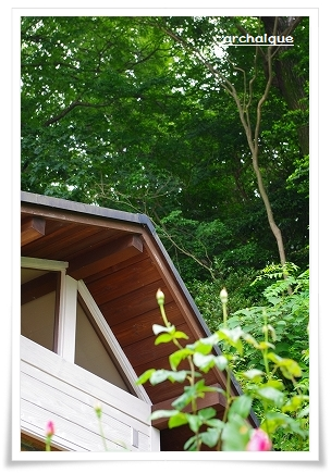 森の工房 夏準備!!_c0207890_14138.jpg