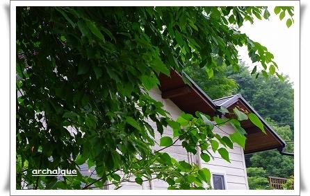 森の工房 夏準備!!_c0207890_142376.jpg