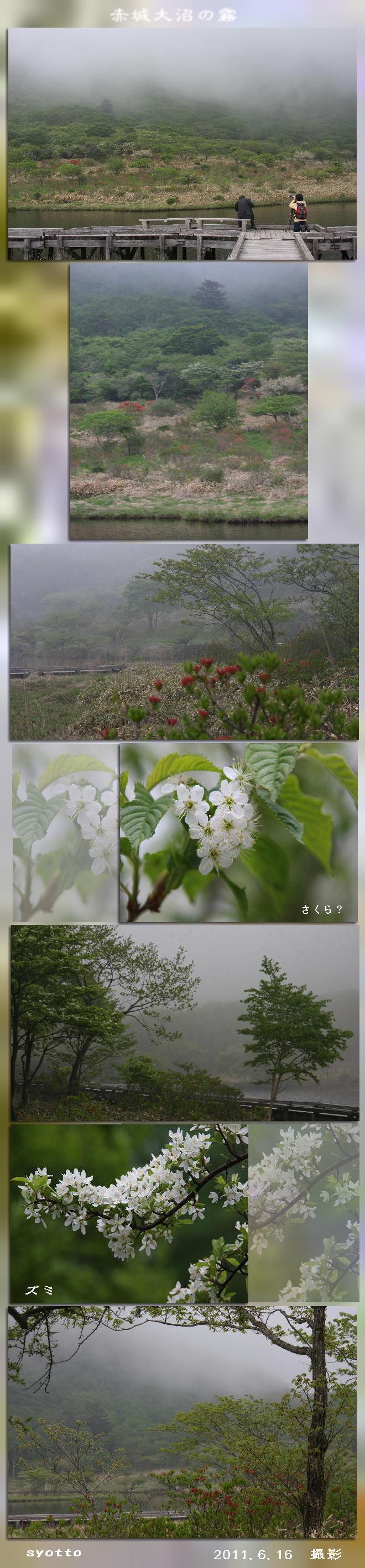 f0164592_7543818.jpg