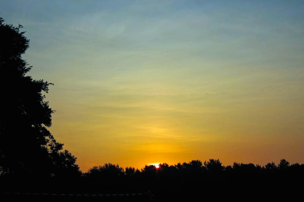 最近のカワちゃんゲテモノばかり/夏至の日の出&大きな黒点_b0024798_5371841.jpg