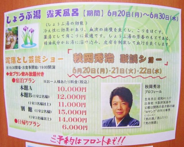 さんべ荘泥落とし芸能ショー_b0083801_16445936.jpg
