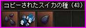 b0062614_112356.jpg