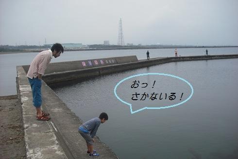 f0177714_1026279.jpg