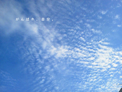 f0095532_14582559.jpg