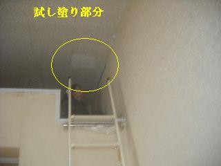 f0031037_2136192.jpg
