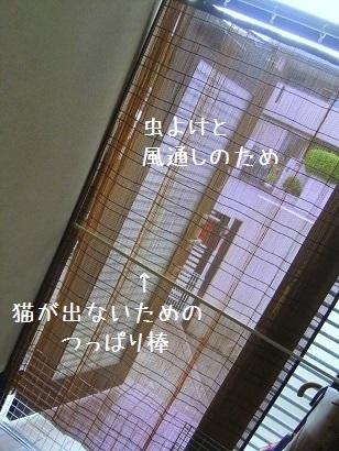 b0118850_12141840.jpg