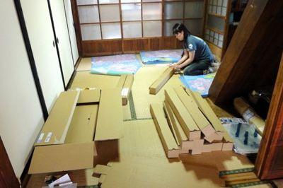 桜プロジェクト  _a0119263_15152776.jpg
