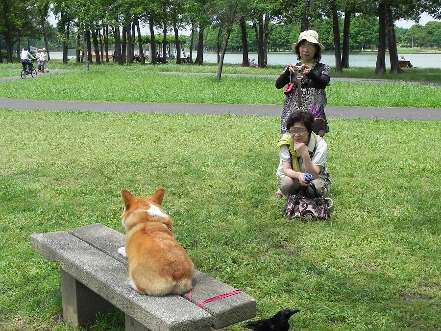 水元公園_c0187781_22425.jpg