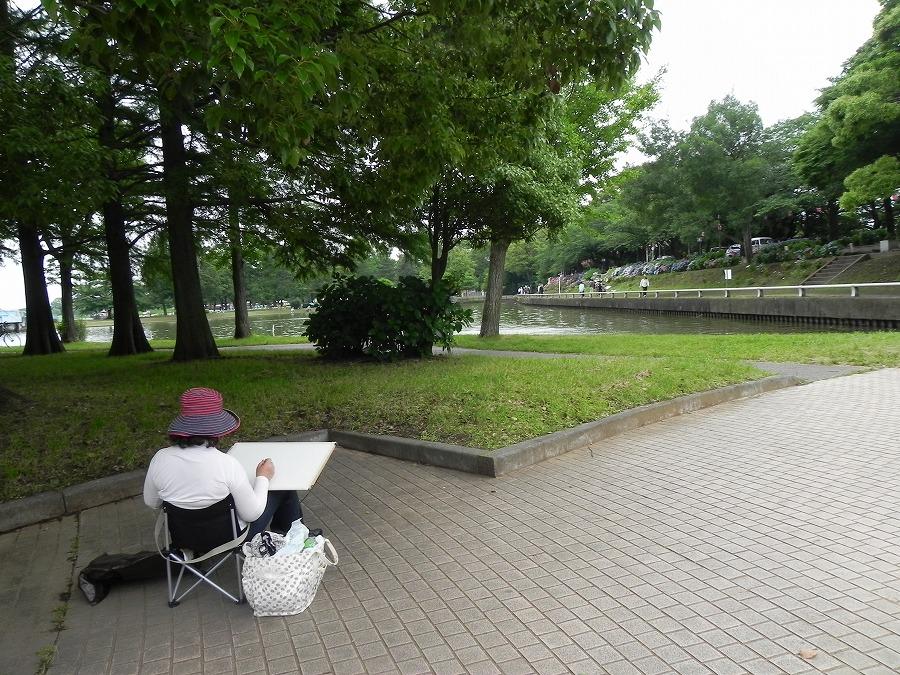 水元公園_c0187781_2263896.jpg