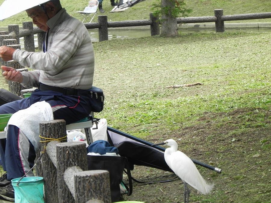 水元公園_c0187781_8252241.jpg