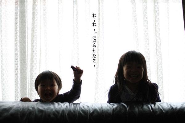 f0224584_794990.jpg