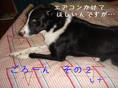 b0101991_2225618.jpg